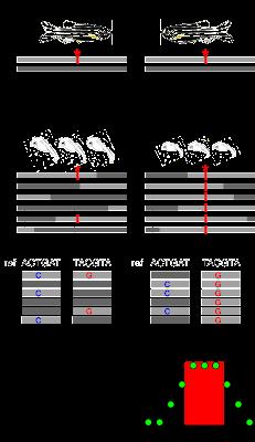 RNAmapper